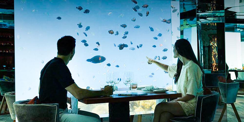Büyüleyici Su Altı Restoranı