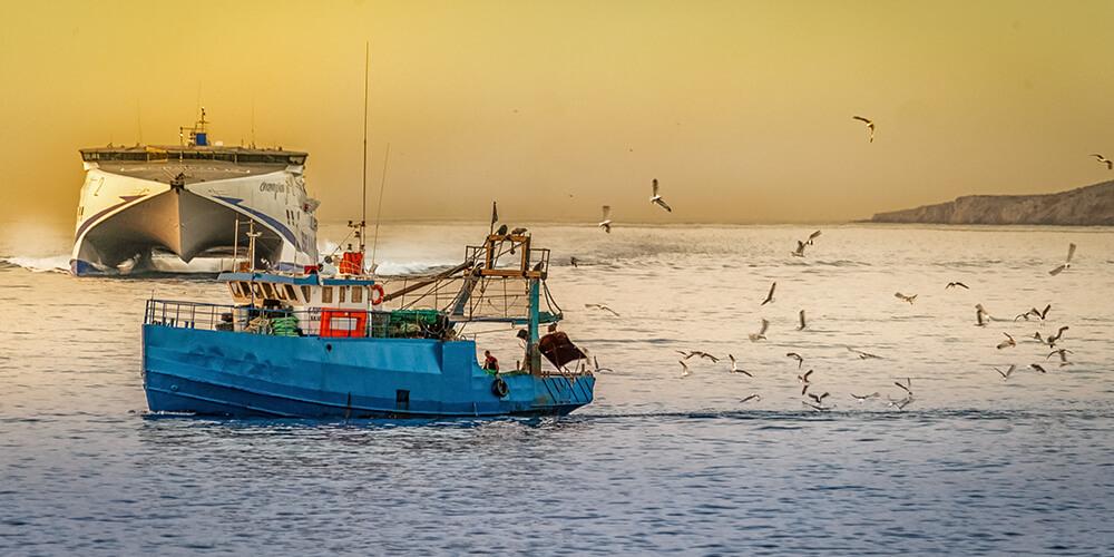Denizlerde Av Yasağı Ne Zaman Başlıyor